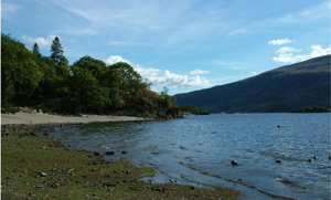 Loch Lomond Shoreline